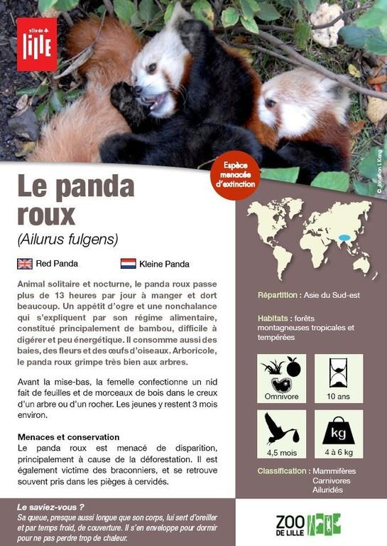 Www Panda Hotel De