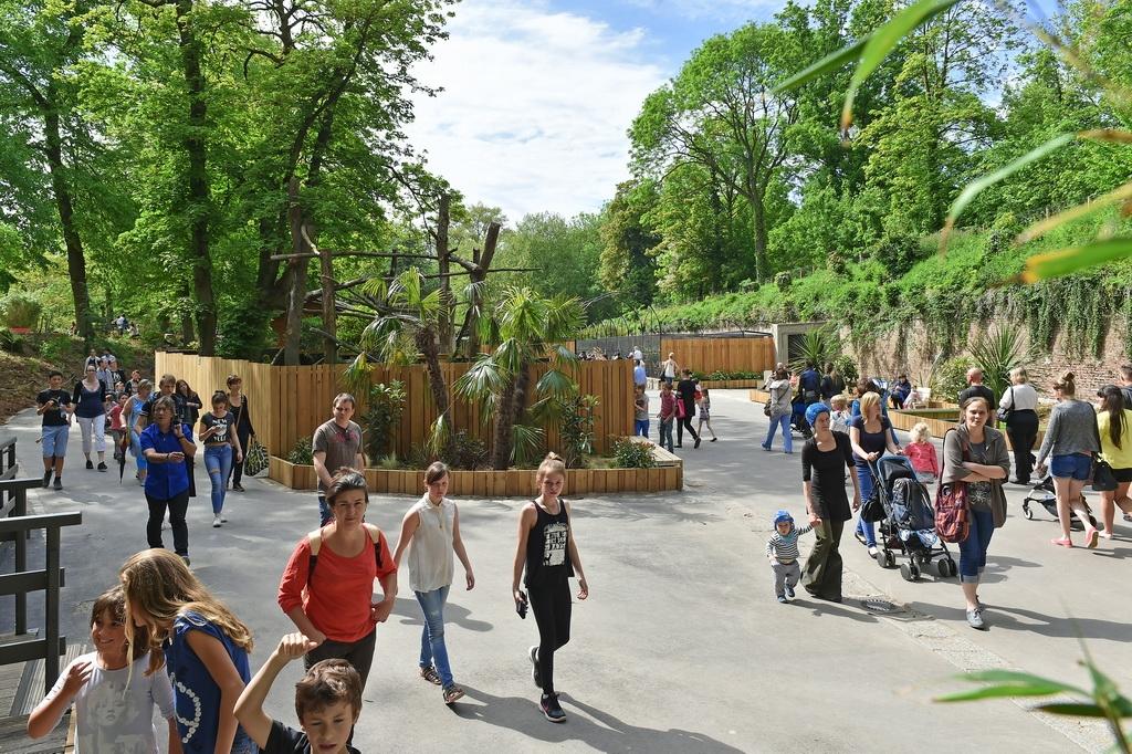Zoo et ferme p dagogique envie de nature que faire for Mon garage lille fives