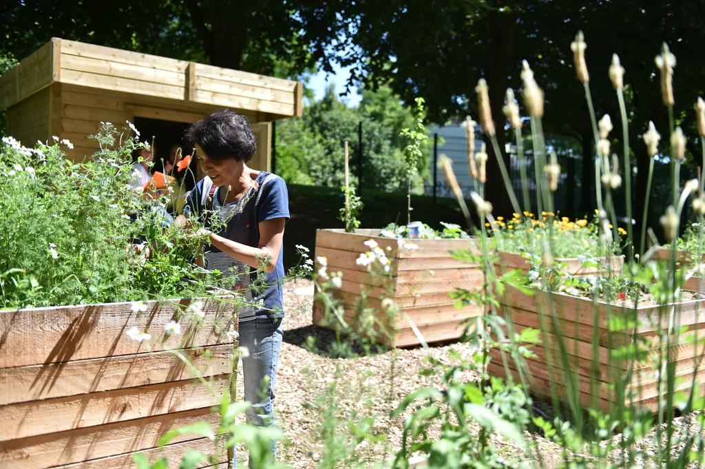 participer un jardin d 39 habitants pratiquer envie de nature que faire lille ville. Black Bedroom Furniture Sets. Home Design Ideas