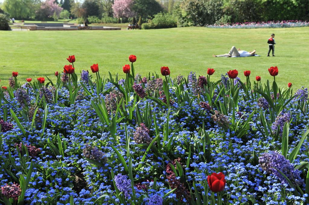 Le jardin des plantes nos quipements ville de lille adresses horaires calendriers et - Le jardin champetre magog lille ...